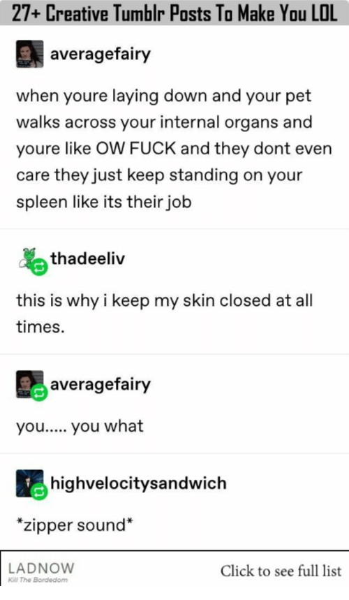Click, Lol, and Tumblr: 27+ Creative Tumblr Posts To Make You LOL  averagefairy  when youre laying down and your pet  walks across your internal organs and  youre like OW FUCK and they dont even  care they just keep standing on your  spleen like its their job  thadeeliv  this is why i keep my skin closed at all  times.  averagefairy  you.. you what  highvelocitysandwich  *zipper sound*  LADNOW  Click to see full list  Kill The Bordedom