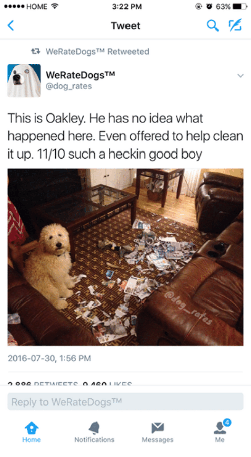 Heckin: 3:22 PM  HOME  63%  Tweet  ta WeRate Dogs  Retweeted  TM TM  WeRateDogs  dog rates  This is Oakley. He has no idea what  happened here. Even offered to help clean  it up. 11/10 such a heckin good boy  2016-07-30, 1:56 PM  nCTIA/CCTC  IL CC  Reply to WeRateDogsTM  Notifications  Home  Messages  Me