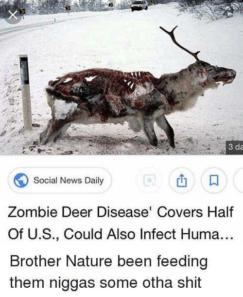 Trendy: 3 da  Social News Daily  Zombie Deer Disease Covers Half  Of U.S., Could Also Infect Huma Brother Nature been feeding them niggas some otha shit