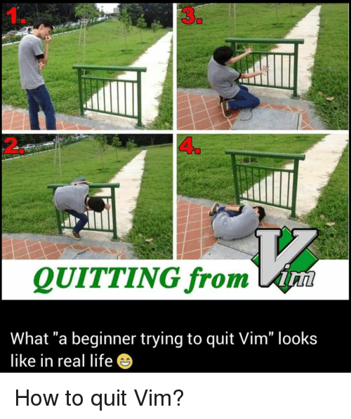 3 QUITTING From What a Beginner Trying to Quit Vim Looks