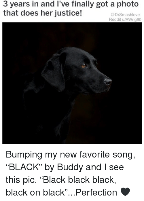 """Memes, Reddit, and Black: 3 years in and l've finally got a photo  that does her justice!  @DrSmashlove  Reddit u/AWrig90 Bumping my new favorite song, """"BLACK"""" by Buddy and I see this pic. """"Black black black, black on black""""...Perfection 🖤"""