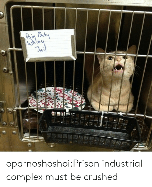 Complex, Target, and Tumblr: 346  Kin oparnoshoshoi:Prison industrial complex must be crushed