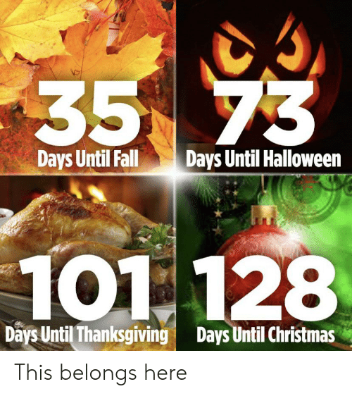 Christmas, Fall, and Halloween: 35 73  Days Until Fall  Days Until Halloween  101 128  Days Until Thanksgiving  Days Until Christmas This belongs here