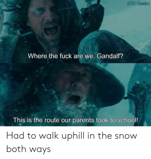 Gandalf, Parents, and School: 37th Realm  Where the fuckare we, Gandalf?  This is the route our parents took to school! Had to walk uphill in the snow both ways