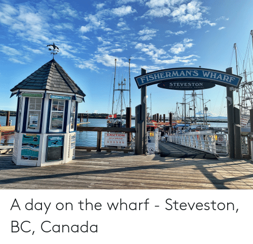 Children, Dogs, and Best: 3W  FISHERMAN'S WHARF  STEVESTON  COLUM BIA, CA NADA  BRITIS H  Vancouver Whale Watch  Harbour Tours  來自皇后岛的野生三文魚  lmon  OTOO  ok and Line  f  OPEN & SEMICIOVEREO Z  SUARANTERD SIGHTINGS  TTE ISLAND  WHALES!  The Ondy Coneny m Vihe  VENING BREE  u4 274-9565  ar  3 to 5 Hour Tours  35 Minutes Frors Downtown  Shuite Service  CAUTION  NO DOGS  SUPPERY  CAUTION  WET  FLOAT&RAMP DECK MAY BE SLIPPERY  ALLOWED  WHALES!  USE AT OWN RISK  Children under 12 years of age MUST be  accompanied by an ADULT at ALL TIMES!  VANCOUVER  WHALE WATCH  VANCOUVER  WHALE BATCH  Vancouver's Best Whate Watching Experience  By Order of STEVESTON HARBOUR AUTHORITY  For assistance, call 604.272.5539  Today's Fratvro  UARANTEED SIGHTING  2ASAO  OPEN AND SEM-COVERED ZODIAC VESSELS  604-274-9565 A day on the wharf - Steveston, BC, Canada