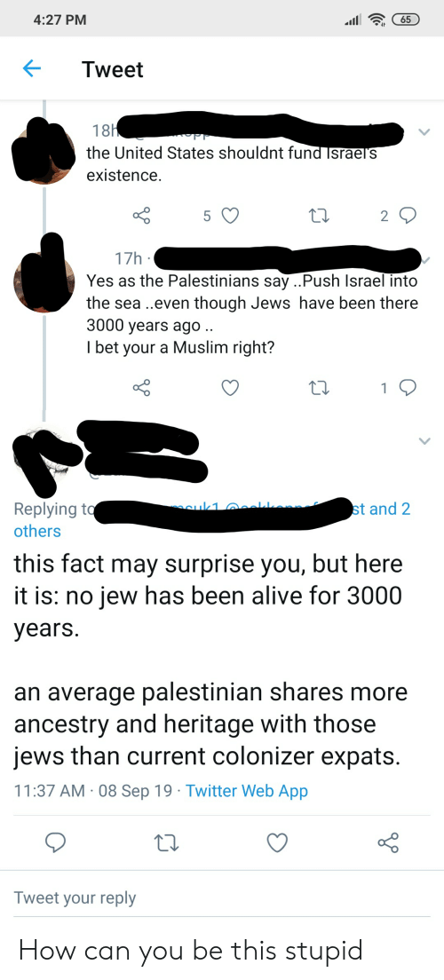 Alive, I Bet, and Muslim: 4:27 PM  65  Tweet  18H  Tr  the United States shouldnt fund Israels  existence  5  2  17h  Yes as the Palestinians say ..Push Israel into  the sea..even though Jews have been there  3000 years ago ..  I bet your a Muslim right?  1Q  cuk1 eal  Replying to  others  st and 2  this fact may surprise you, but here  it is: no jew has been alive for 3000  years.  an average palestinian shares more  ancestry and heritage with those  jews than current colonizer expats.  11:37 AM 08 Sep 19 Twitter Web App  Tweet your reply How can you be this stupid