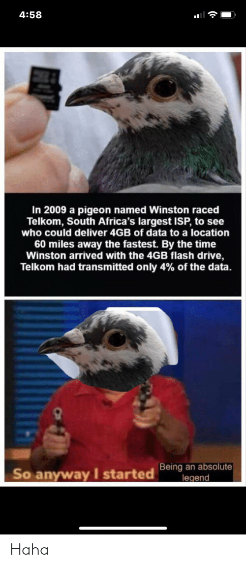 Drive, Time, and Haha: 4:58  In 2009 a pigeon named Winston raced  Telkom, South Africa's largest ISP, to see  who could deliver 4GB of data to a location  60 miles away the fastest. By the time  Winston arrived with the 4GB flash drive,  Telkom had transmitted only 4% of the data.  Being an absolute  legend  So anyway I started Haha