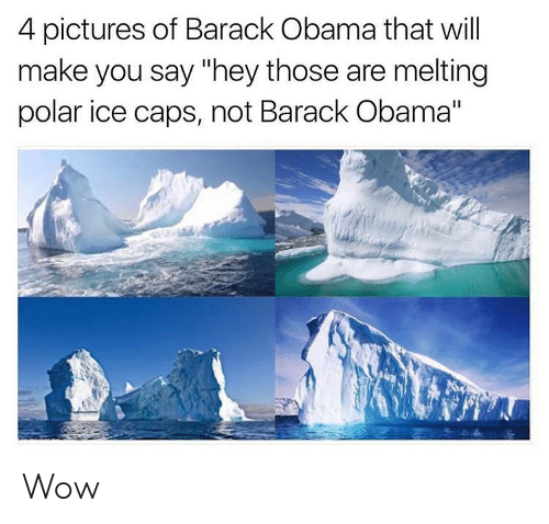 "Memes, Obama, and Wow: 4 pictures of Barack Obama that will  make you say ""hey those are melting  polar ice caps, not Barack Obama"" Wow"