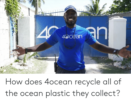 Dank, Ocean, and All of The: 4bcean How does 4ocean recycle all of the ocean plastic they collect?