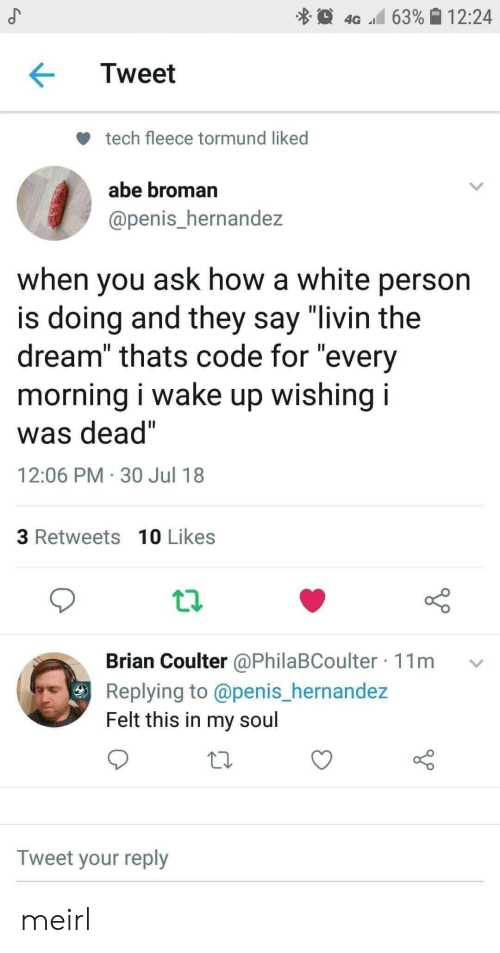 "Penis, White, and MeIRL: 4G 63%| 12:24  Tweet  tech fleece tormund liked  abe broman  @penis_hernandez  when you ask how a white person  is doing and they say ""livin the  dream"" thats code for ""every  morning I wake up wishing I  was dead""  12:06 PM 30 Jul 18  3 Retweets 10 Likes  Brian Coulter @PhilaBCoulter 11m v  Replying to @penis_hernande:z  Felt this in my soul  Tweet your reply meirl"