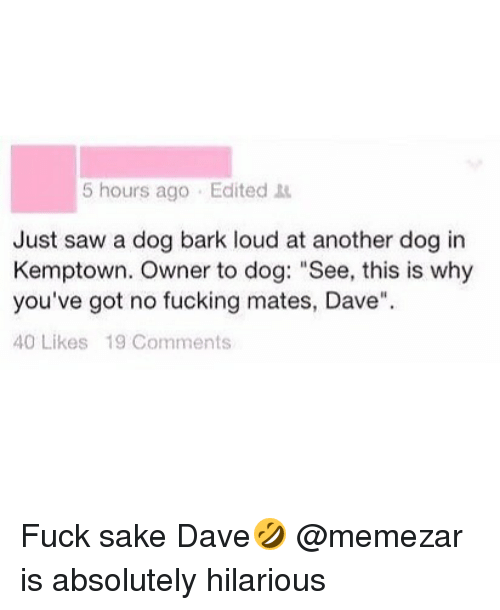 "Fucking, Saw, and Fuck: 5 hours ago Edited  Just saw a dog bark loud at another dog in  Kemptown. Owner to dog: ""See, this is why  you've got no fucking mates, Dave""  40 Likes 19 Comments Fuck sake Dave🤣 @memezar is absolutely hilarious"
