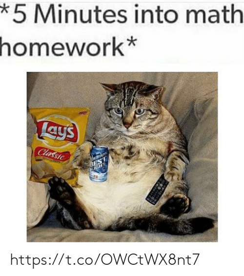 Lay's, Best, and Math: *5 Minutes into math  homework*  Lays  Classic  BEST  IGHT https://t.co/OWCtWX8nt7