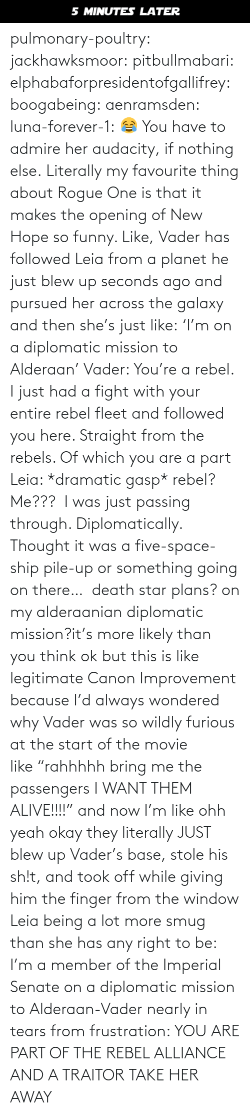 "Plans: 5 MINUTES LATER pulmonary-poultry:  jackhawksmoor:  pitbullmabari:  elphabaforpresidentofgallifrey:  boogabeing:  aenramsden:  luna-forever-1: 😂 You have to admire her audacity, if nothing else.  Literally my favourite thing about Rogue One is that it makes the opening of New Hope so funny. Like, Vader has followed Leia from a planet he just blew up seconds ago and pursued her across the galaxy and then she's just like: 'I'm on a diplomatic mission to Alderaan' Vader: You're a rebel. I just had a fight with your entire rebel fleet and followed you here. Straight from the rebels. Of which you are a part Leia: *dramatic gasp* rebel? Me???  I was just passing through. Diplomatically. Thought it was a five-space-ship pile-up or something going on there…   death star plans? on my alderaanian diplomatic mission?it's more likely than you think   ok but this is like legitimate Canon Improvement because I'd always wondered why Vader was so wildly furious at the start of the movie like ""rahhhhh bring me the passengers I WANT THEM ALIVE!!!!"" and now I'm like ohh yeah okay they literally JUST blew up Vader's base, stole his sh!t, and took off while giving him the finger from the window    Leia being a lot more smug than she has any right to be: I'm a member of the Imperial Senate on a diplomatic mission to Alderaan-Vader nearly in tears from frustration: YOU ARE PART OF THE REBEL ALLIANCE AND A TRAITOR TAKE HER AWAY"