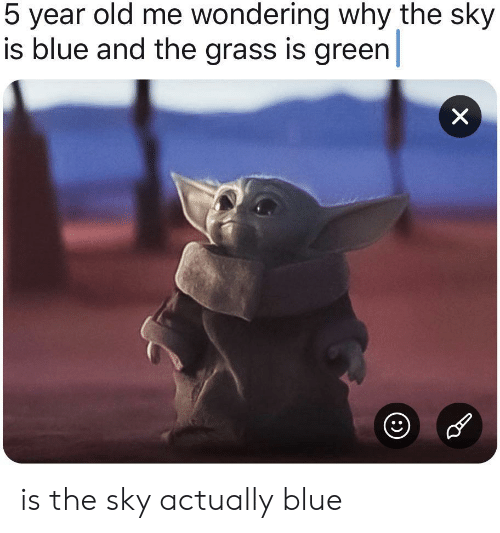 Blue, Old, and Sky: 5 year old me wondering why the sky  is blue and the grass is green  X is the sky actually blue