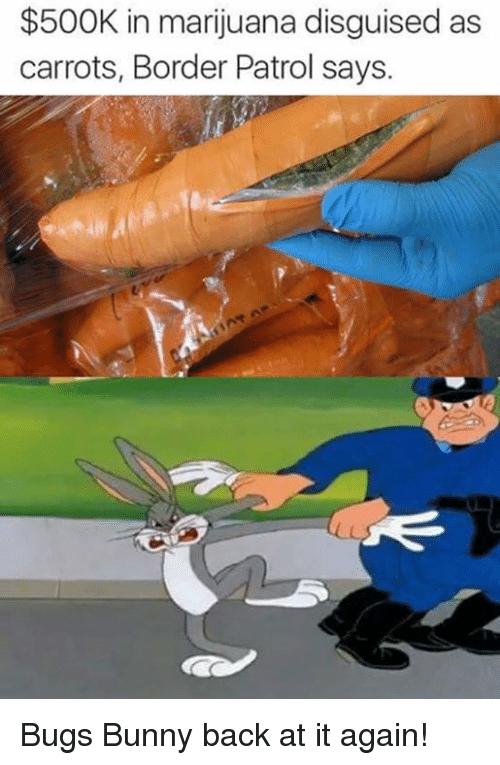 Bugs Bunny, Bunnies, and Memes: $500K in marijuana disguised as  carrots, Border Patrol says. Bugs Bunny back at it again!