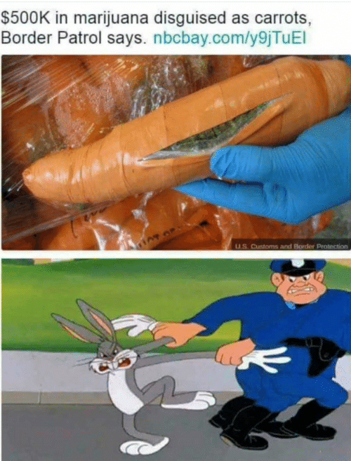Marijuana, Com, and Border Patrol: $500K in marijuana disguised as carrots,  Border Patrol says. nbcbay.com/y9jTuEl  U.S. Customs and Border Protection