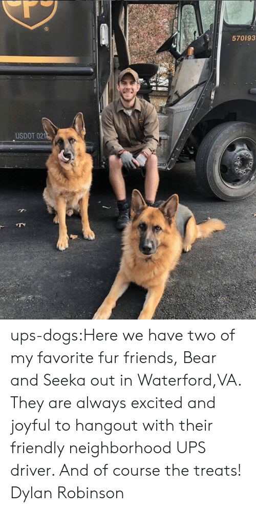 Dogs, Friends, and Target: 570193  USDOT 021 ups-dogs:Here we have two of my favorite fur friends, Bear and Seeka out in Waterford,VA. They are always excited and joyful to hangout with their friendly neighborhood UPS driver. And of course the treats! Dylan Robinson