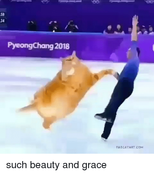 Memes, 🤖, and Grace: 59  34  PyeongChang 2018  FATCA TART COH such beauty and grace