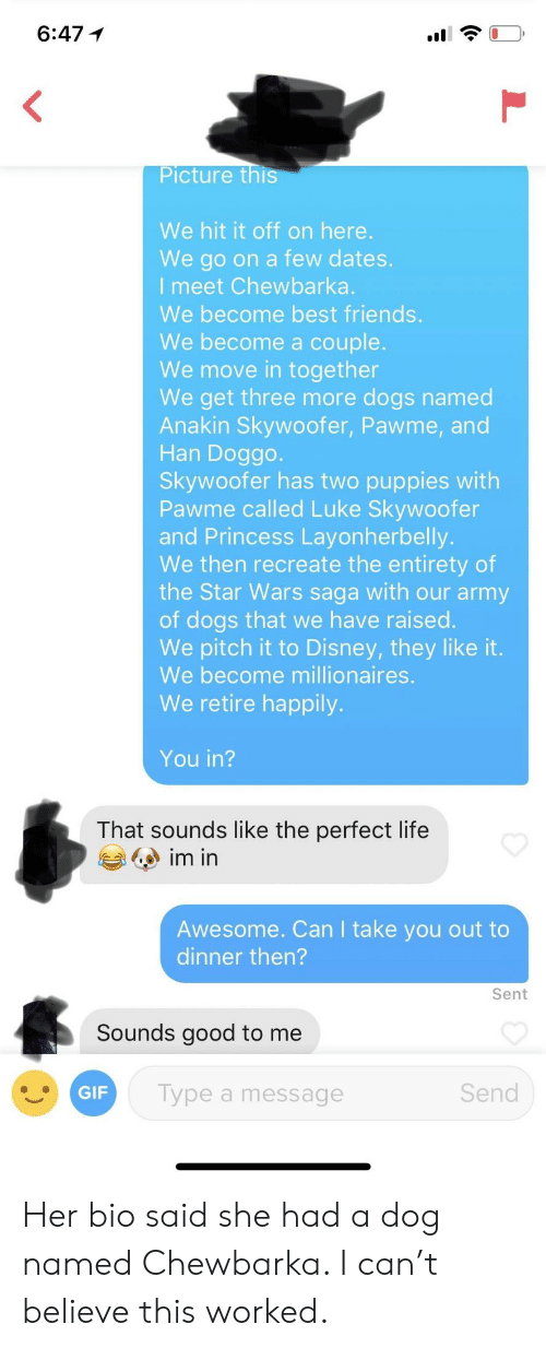 Disney, Dogs, and Friends: 6:47 1  Picture  this  We hit it off on here  We go on a few dates.  I meet Chewbarka.  We become best friends  We become a couple.  We move in together  We get three more dogs named  Anakin Skywoofer, Pawme, and  Han Doggo  Skywoofer has two puppies with  Pawme called Luke Skywoofer  and Princess Layonherbelly.  We then recreate the entirety of  the Star Wars saga with our army  of dogs that we have raised.  We pitch it to Disney, they like it.  We become millionaires.  We retire happily.  You in?  That sounds like the perfect life  Awesome. Can I take you out to  dinner then?  Sent  Sounds good to me  GIF  Type a message  Send Her bio said she had a dog named Chewbarka. I can't believe this worked.