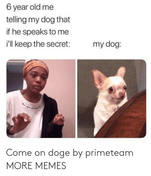 secret: 6 year old me  telling my dog that  if he speaks to me  i'll keep the secret:  my dog: Come on doge by primeteam MORE MEMES