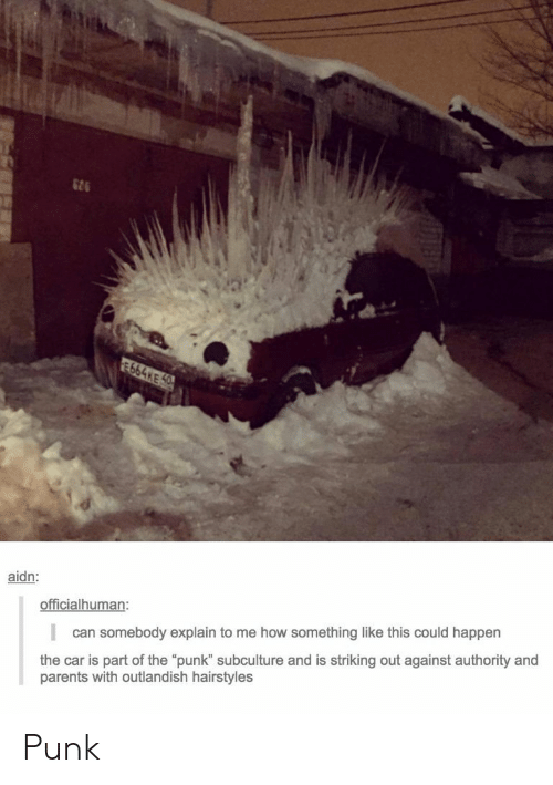 """subculture: 626  aidn:  officialhuman:  can somebody explain to me how something like this could happen  the car is part of the """"punk"""" subculture and is striking out against authority and  parents with outlandish hairstyles Punk"""