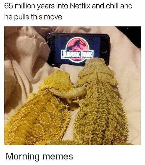Netflix And Chilling: 65 million years into Netflix and chill and  he pulls this move Morning memes