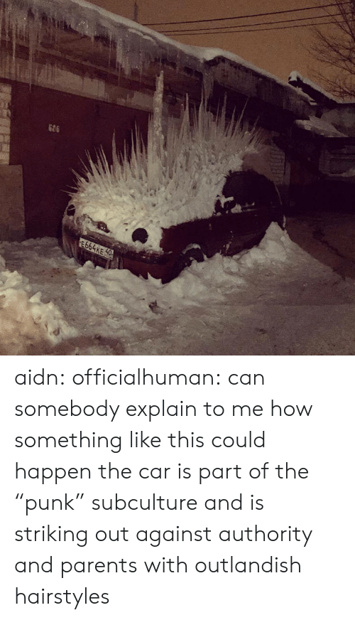 """subculture: 664KE 0 aidn: officialhuman:  can somebody explain to me how something like this could happen  the car is part of the """"punk"""" subculture and is striking out against authority and parents with outlandish hairstyles"""