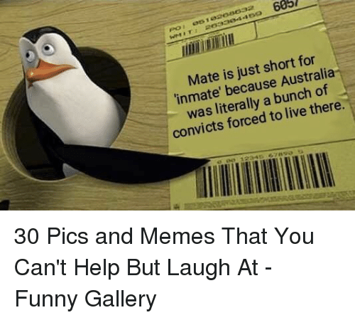 Funny, Memes, and Australia: 685  Mate is just short for  inmate' because Australia-  was literally a bunch of  convicts forced to live there.  , 12341)ら7 30 Pics and Memes That You Can't Help But Laugh At - Funny Gallery