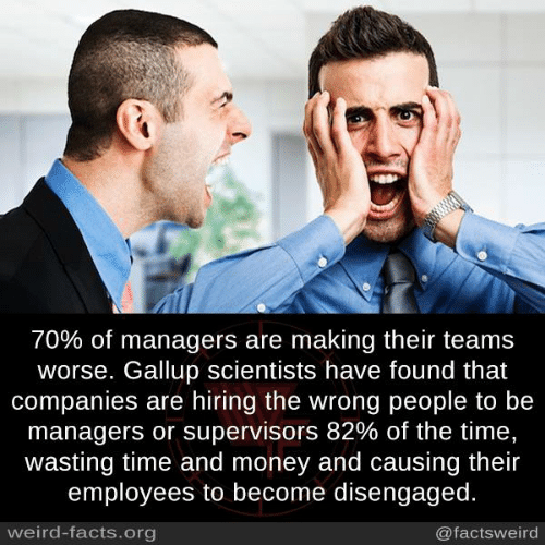 Facts, Memes, and Money: 70% of managers are making their teams  worse. Gallup scientists have found that  companies are hiring the wrong people to be  managers or supervisors 82% of the time.  wasting time and money and causing their  employees to become disengaged.  weird-facts.org  @factsweird