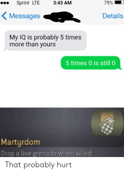 Live, Sprint, and Martyrdom: 75%  Sprint LTE  3:43 AM  Messages  Details  My IQ is probably 5 times  more than yours  5 times 0 is still 0  Martyrdom  Drop a live grenade when killed That probably hurt
