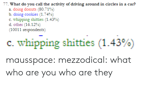 Circles: 77. What do you call the activity of driving around in circles in a car?  a. doing donuts (80.71%)  b. doing cookies (1.74%)  c-whipping shitties (1.43%)  other (16.12%)  (10011 respondents)   c. whipping shitties (1.43%) mausspace:  mezzodical:  what  who are you who are they