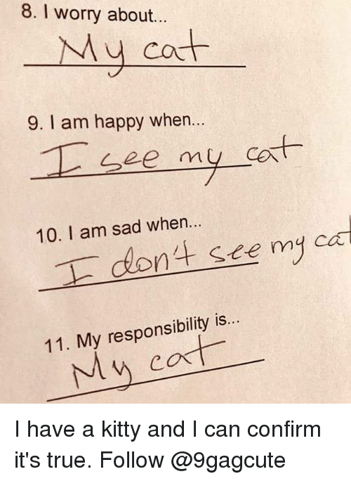 Memes, True, and Happy: 8. I worry about.  Mu cot  9. I am happy when.  10. I am sad when..  dont sece my ei  11. My responsibility is.. I have a kitty and I can confirm it's true. Follow @9gagcute