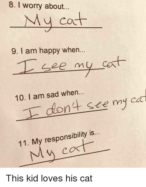 Happy, Sad, and Responsibility: 8. I worry about...  My cot  9. I am happy when..  et  10. I am sad when...  nt see my ca  11. My responsibility is  My cost <p>This kid loves his cat</p>
