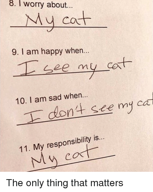 Happy, Sad, and Responsibility: 8. I worry about...  My cot  9. I am happy when...  10. I am sad when.  dont sce my ca  11. My responsibility is.  Mw <p>The only thing that matters<br/></p>