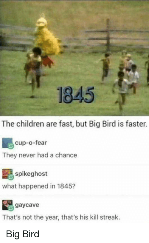 Children, Tumblr, and Big Bird: 845  The children are fast, but Big Bird is faster.  cup-o-fear  They never had a chance  spikeghost  what happened in 1845?  gaycave  That's not the year, that's his kill streak. Big Bird
