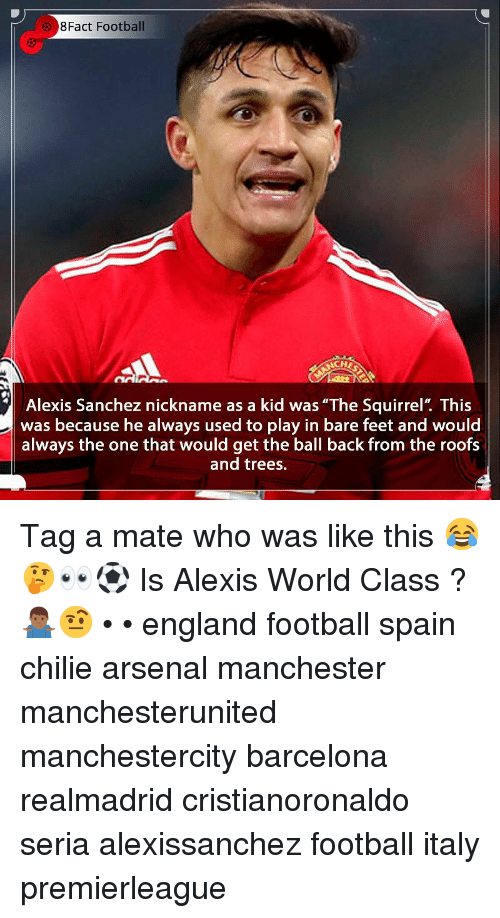 "Arsenal, Barcelona, and England: 8Fact Football  CH  Alexis Sanchez nickname as a kid was ""The Squirrel"". This  was because he always used to play in bare feet and would  always the one that would get the ball back from the roofs  and trees. Tag a mate who was like this 😂🤔👀⚽️ Is Alexis World Class ? 🤷🏾‍♂️🤨 • • england football spain chilie arsenal manchester manchesterunited manchestercity barcelona realmadrid cristianoronaldo seria alexissanchez football italy premierleague"