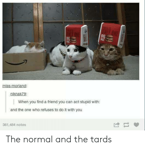Http, Strong, and Act: 8l  miss-morland  niknak7g  When you find a friend you can act stupid with:  and the one who refuses to do it with you  361,484 notes The normal and the tards