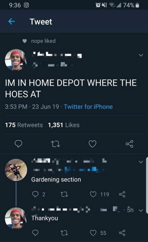Gardening: 9:36 O  74%  Tweet  nope liked  IM IN HOME DEPOT WHERE THE  HOES AT  3:53 PM 23 Jun 19 Twitter for iPhone  175 Retweets 1,351 Likes  Gardening section  2  119  P 5n  Thankyou  55  >