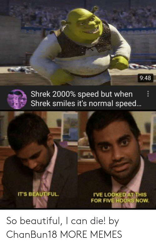 Beautiful, Dank, and Memes: 9:48  Shrek 2000% speed but when  Shrek smiles it's normal spee...  IT'S BEAUTIFUL  IVE LOOKED AT THIS  FOR FIVE HOURS NOW So beautiful, I can die! by ChanBun18 MORE MEMES