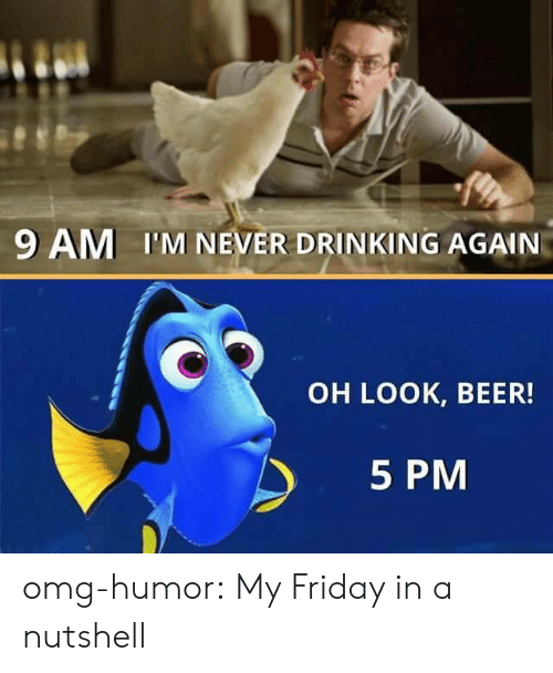 Humor Com: 9 AM I'M NEVER DRINKING AGAIN  OH LOOK, BEER!  5 PM omg-humor:  My Friday in a nutshell