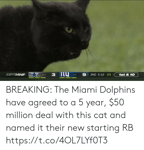 2 6: 9  ESFTMNF  1st&10  2ND 5:32 25  4-3  2-6 BREAKING: The Miami Dolphins have agreed to a 5 year, $50 million deal with this cat and named it their new starting RB https://t.co/4OL7LYf0T3