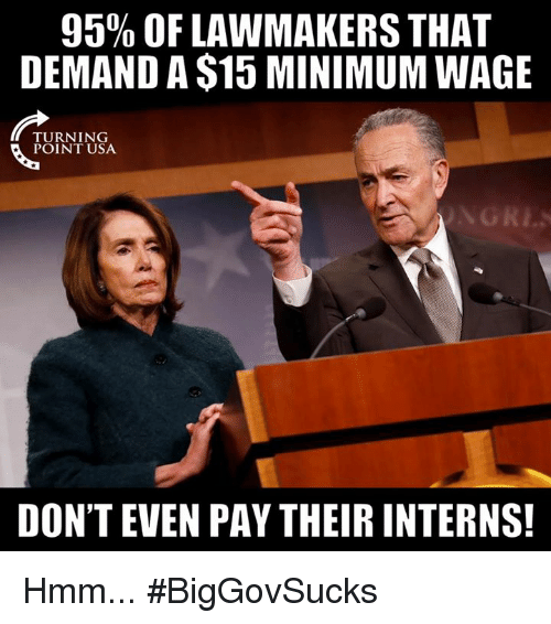 Memes, Minimum Wage, and 🤖: 95% OF LAWMAKERS THAT  DEMAND A $15 MINIMUM WAGE  TURNING  POINT USA  DON'T EVEN PAY THEIR INTERNS! Hmm... #BigGovSucks