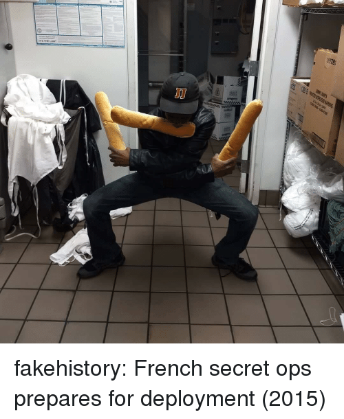 Tumblr, Blog, and French: 9978  ITS THELAW fakehistory:  French secret ops prepares for deployment (2015)