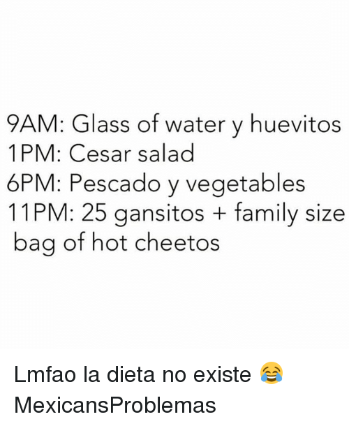 Cheetos, Family, and Memes: 9AM: Glass of water y huevitos  1PM: Cesar salad  6PM: Pescado y vegetables  11PM: 25 gansitos family size  bag of hot cheetos Lmfao la dieta no existe 😂 MexicansProblemas