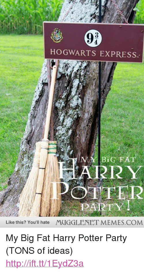"""Harry Potter, Memes, and Party: 9i  HOGWARTS EXPRESS.  ARR Y  OTFER  PARTY!  Like this? You'll hate  MUGGLENET MEMES.COM <p>My Big Fat Harry Potter Party (TONS of ideas) <a href=""""http://ift.tt/1EydZ3a"""">http://ift.tt/1EydZ3a</a></p>"""