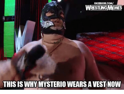 Facebook, Wrestling, and World Wrestling Entertainment: FACEBOOK COM/  STUNG  THIS IS WHY MYSTERIO WEARS AVEST Now