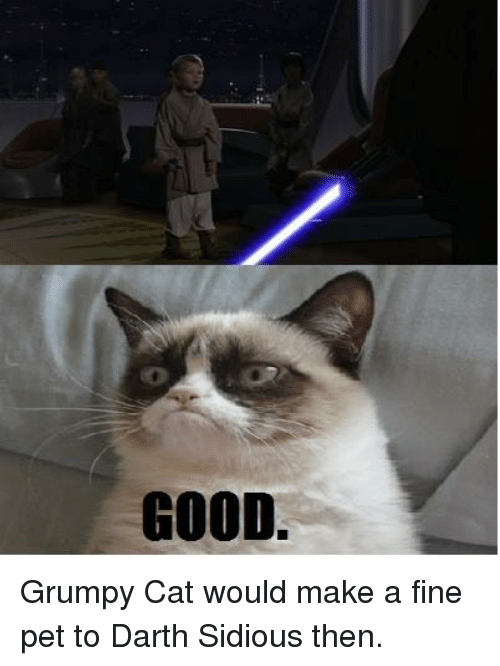 sidious: GOOD. Grumpy Cat would make a fine pet to Darth Sidious then.