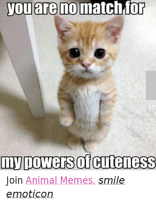 Animals, Anime, and Cute: you are no match for  my powers CuteneSS Join Animal Memes. smile emoticon