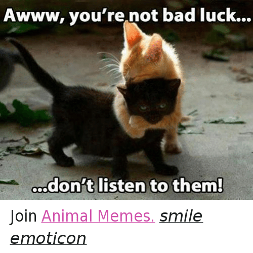 Animals, Anime, and Bad: Awww, you're not bad luck...  don't listen to them! Join Animal Memes. smile emoticon