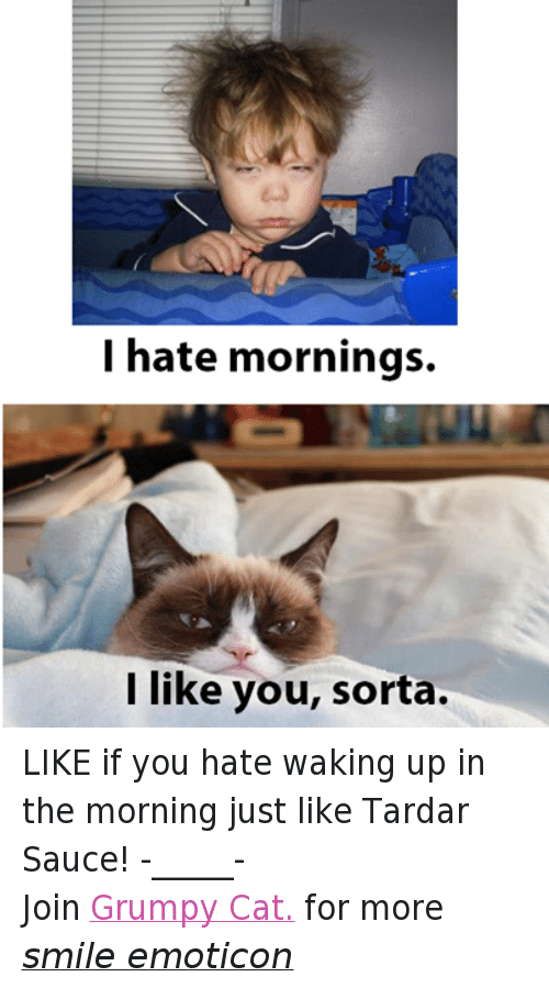 Cats, Ups, and Grumpy Cat: I hate mornings.  like you, sorta. LIKE if you hate waking up in the morning just like Tardar Sauce! -_____- Join Grumpy Cat. for more smile emoticon